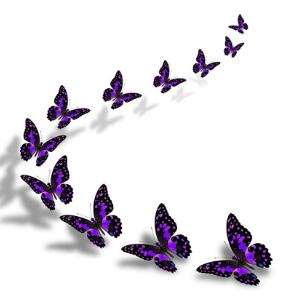 butterfly bracket one